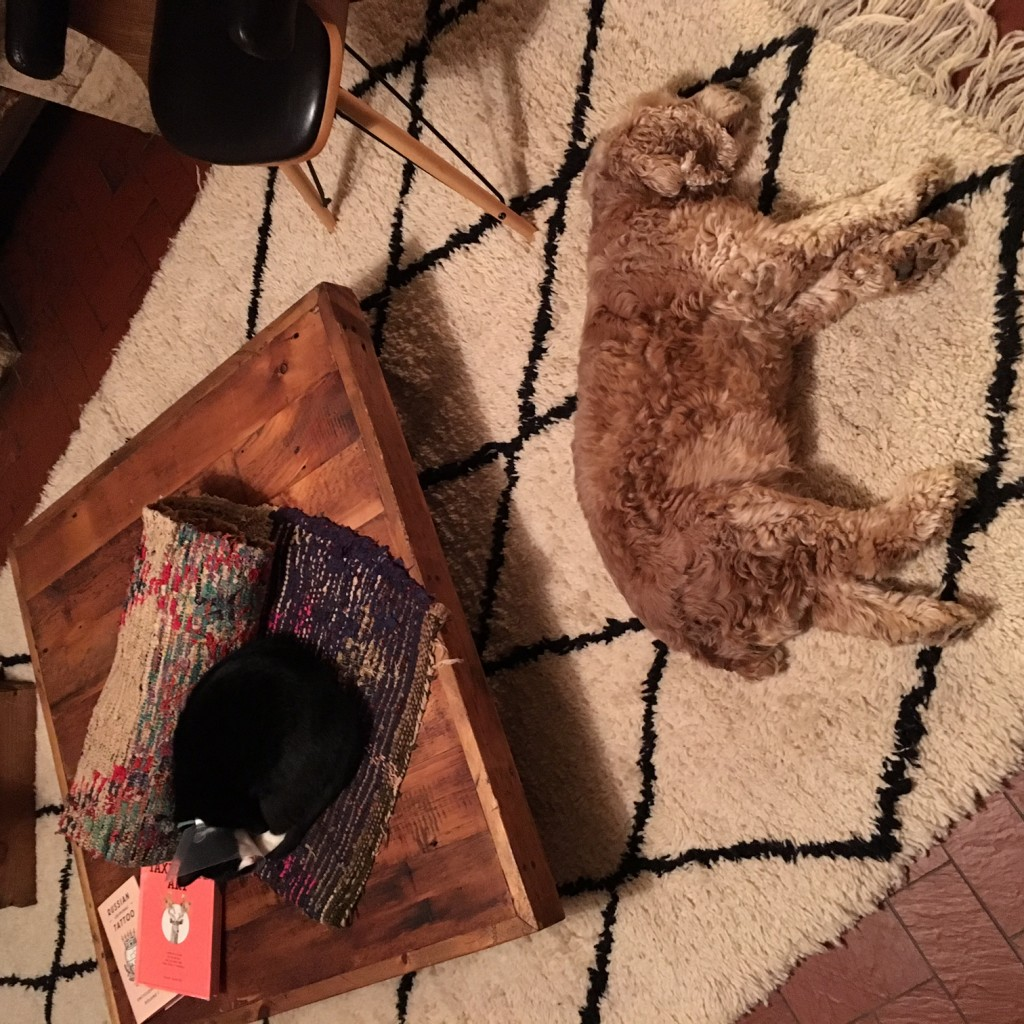 chacun son tapis marocain